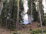 Waldbrand am Ostermontag