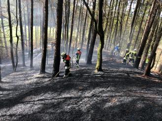 Nachlöscharbeiten nach den Waldbränden