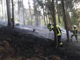 Waldbrände am Ostermontag